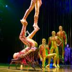 Icarian Games in Varekai
